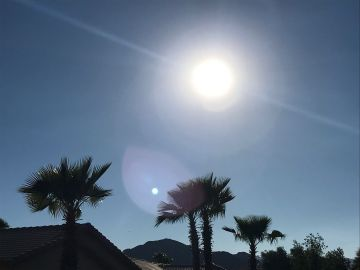 Sizzling Temperatures Expected Throughout the Week