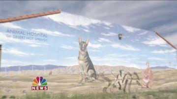 Beloved Desert Hot Springs Mural Vandalized