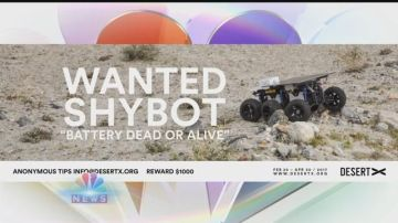 Desert X Development: Search for ShyBot and Installation Closure
