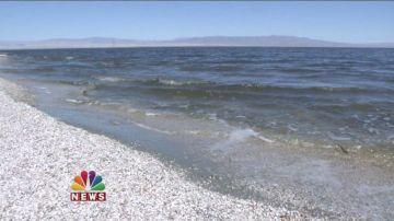Salton Sea Residents React To EPA Rollbacks