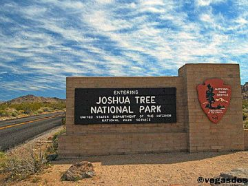 Joshua Tree National Park Makes it Easy for Public to Report Graffiti