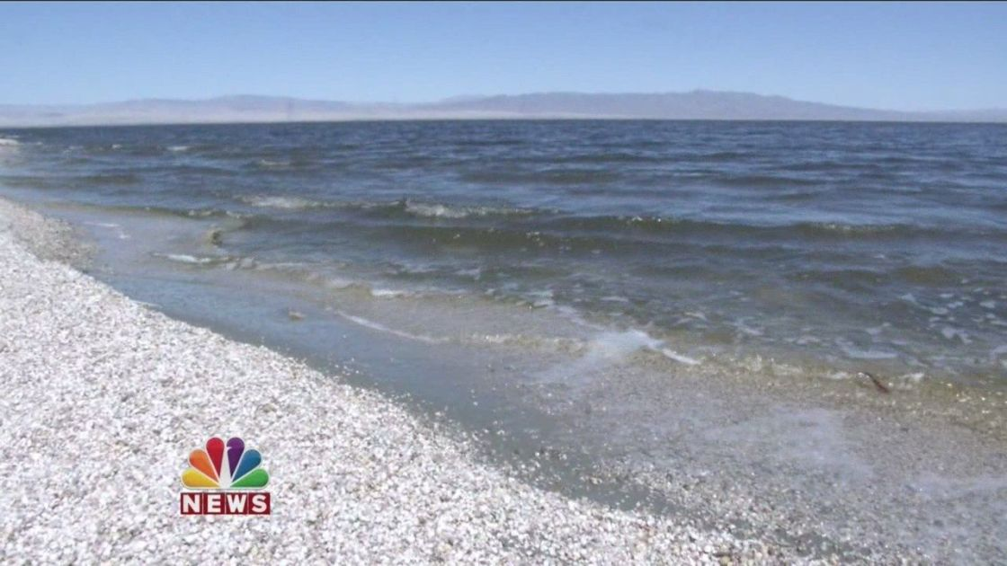 Could A Canal From The Sea of Cortez Save the Salton Sea?