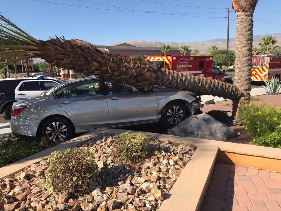 Palm Desert Man Dies Ten Days After Rancho Mirage Crash Into Tree