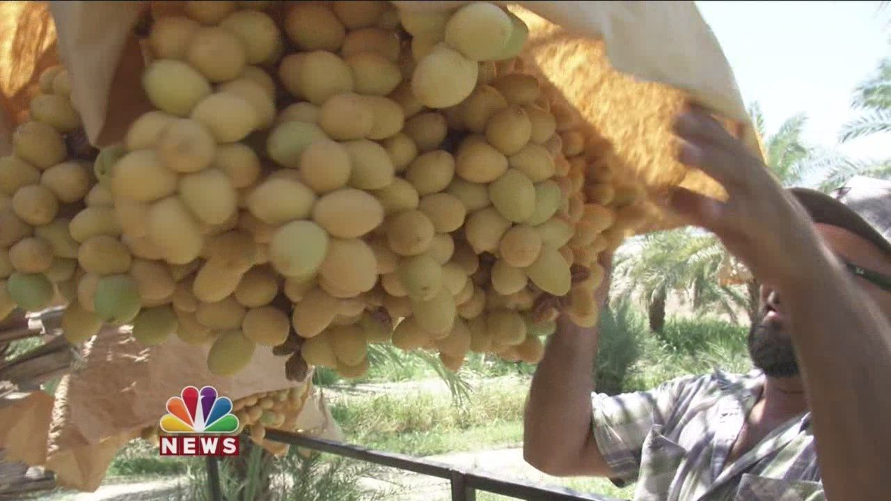Farmer Speaks Out After Thieves Steal His Dates