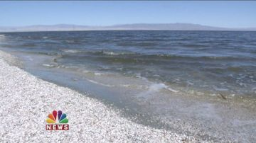 Salton Sea Activists Plead For Help In Sacramento