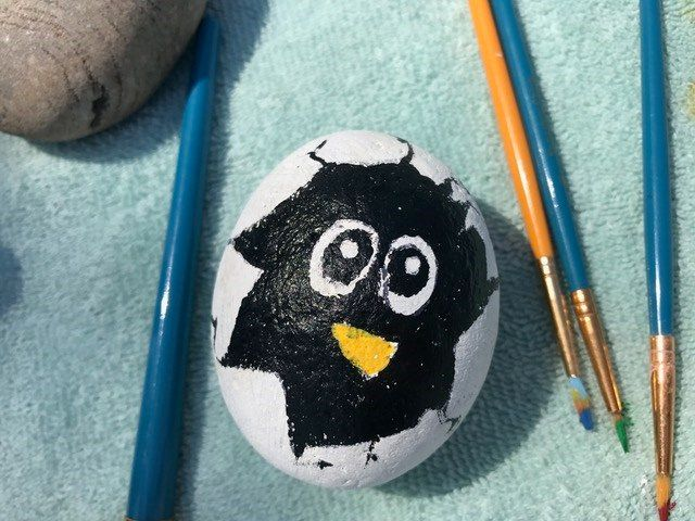 Community Searches For Painted Rocks