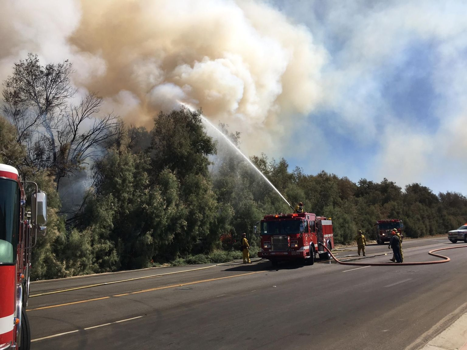 Tree Fire Quickly Spreads as Crews Work to Extinguish Flames