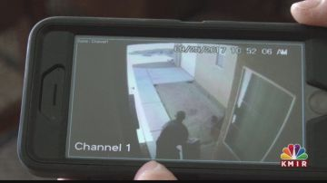 Sneaky Package Thief Caught On Camera
