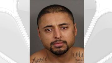 Man Charged for Allegedly Shooting Dog in Palm Desert Neighborhood