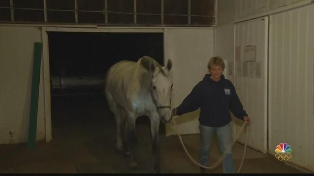 Northern California Stables Evacuated, Horses Arrive in Coachella Valley