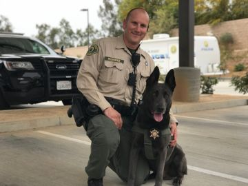 Palm Desert's K-9 Unit Takes a Bite Out of Crime