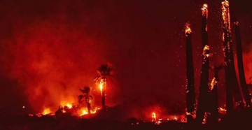 Signs Point to Arson in Fire That Damaged Joshua Tree National Park Landmark