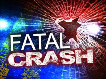 One Dead in Solo Vehicle Crash on Ortega Highway