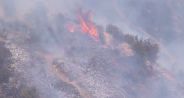 Brush Fire Erupts Near Griffith Park Observatory