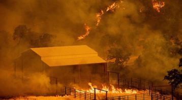 Evacuations Ordered in Northern California as Fire Burns Into Napa County