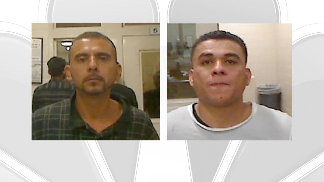 Border Patrol Arrests Sex Offender and Attempted Murder  Suspect