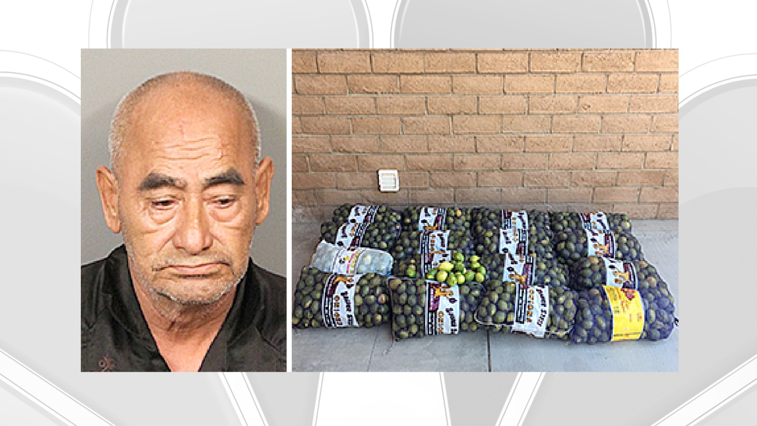 Man Accused of Stealing 800 Pounds of Lemons From Coachella Valley Farm