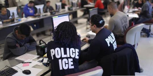 ICE took $169 million from FEMA, TSA, others to fund migrant detention