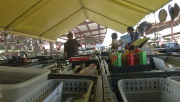 Street Vendors Expect Busiest Season Yet