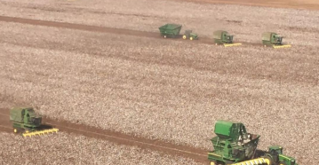 A Texas cotton farmer is battling cancer and couldn't harvest his crop. So his neighbors did it for him