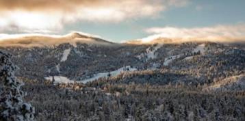 Big Bear's Pretty Much a Snowy Wonderland Right Now