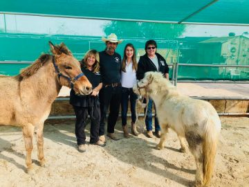 The Coachella Valley Horse Rescue Welcomes Neglected Animals With Open Arms