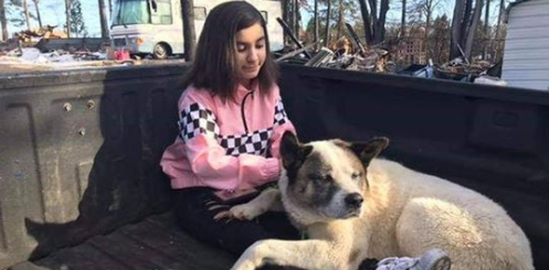 Dog Reunited With Family 101 Days After Wildfire Destroyed Paradise, California