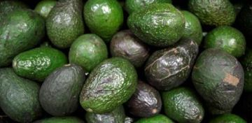 America would run out of avocados in three weeks if Trump shuts down the U.S.-Mexico border