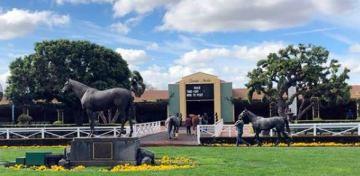 27th Horse Dies at Santa Anita