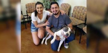Dog Missing for More Than a Year is Back Home After Appearing on a Doorbell Camera