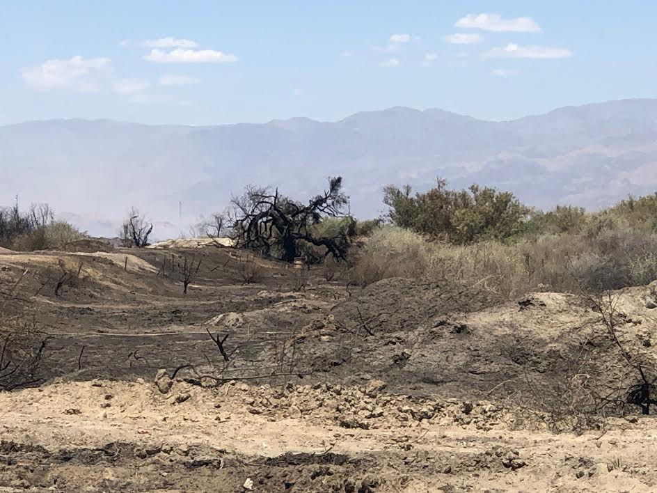 Firefighters Continue Battling Hot Spot In Thermal