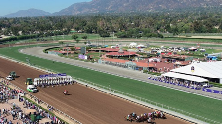 Protesters Call for End of Horse Racing After Latest Horse Death at Santa Anita