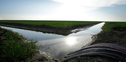California Preparing For Another Drought? Local Experts Say The Coachella Valley Is Prepared