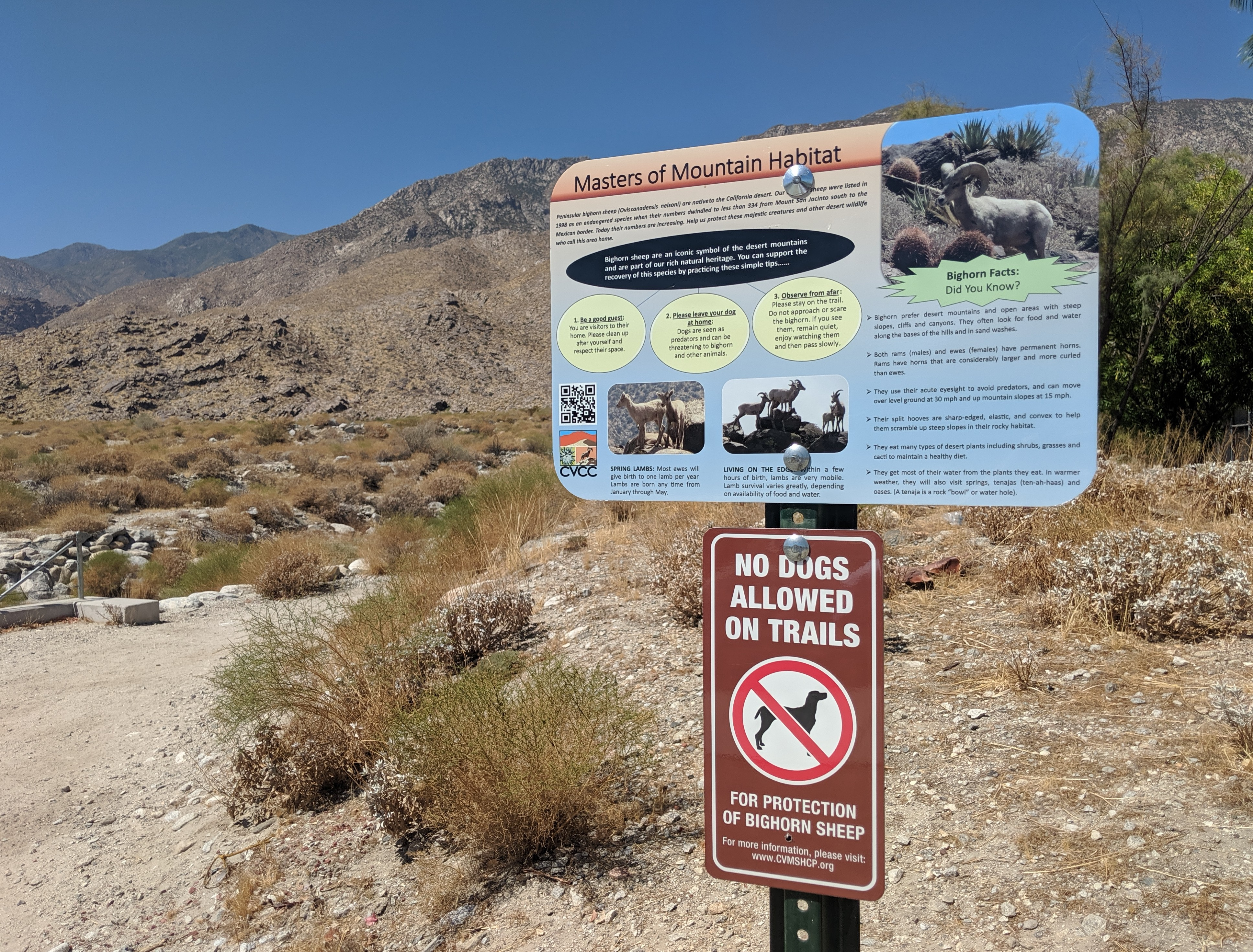 Dogs No Longer Allowed On Popular Palm Springs Trails Nbc Palm Springs News Weather Traffic Breaking News A simple nylon or leather collar that can be quickly removed is safe. dogs no longer allowed on popular palm