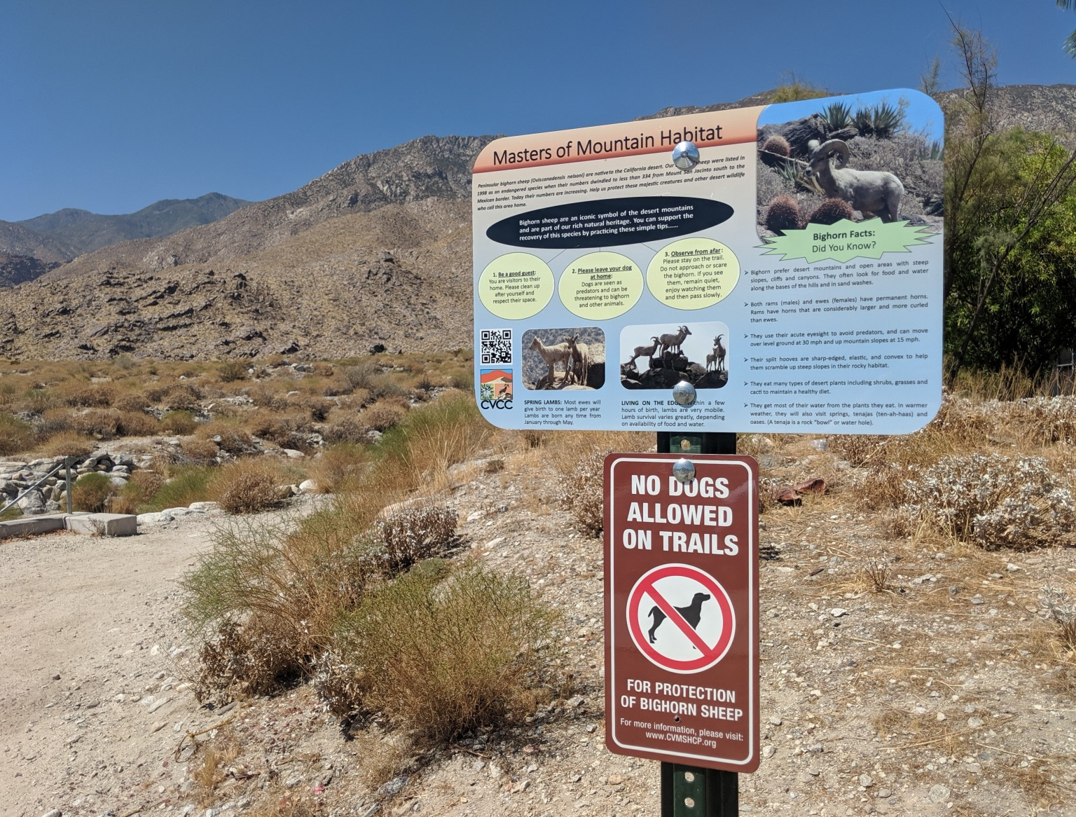 Dogs No Longer Allowed on Popular Palm Springs Trails