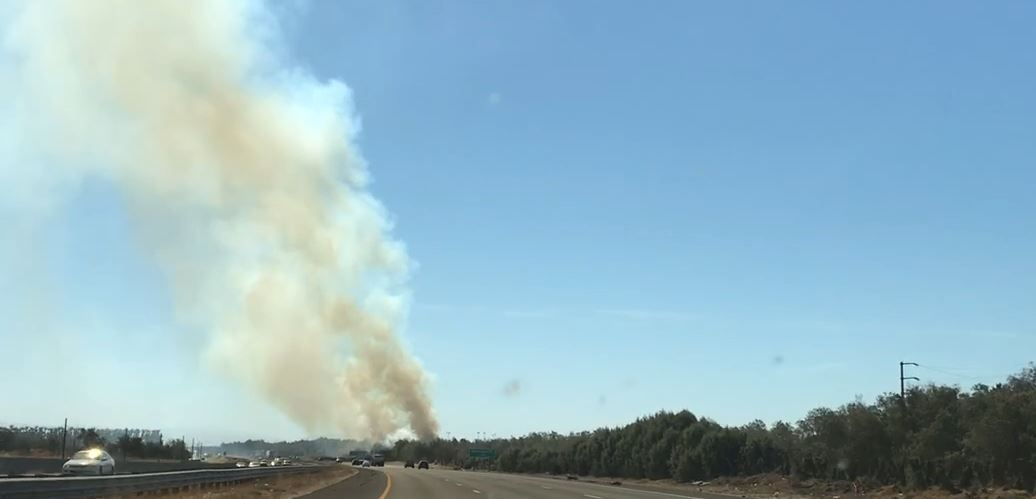 Tamarisk Trees Catch Fire Along I-10 in Palm Desert