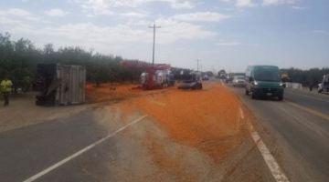 Carrots spilled onto highway after big rig crash