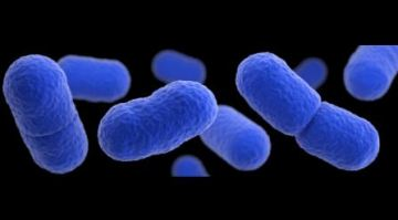 More than 100 vegetable products recalled for listeria concerns