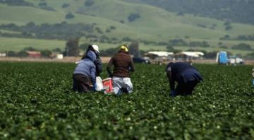 New program launches aimed at protecting farm workers
