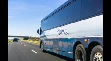 Greyhound is giving free tickets to runaways who want to return home