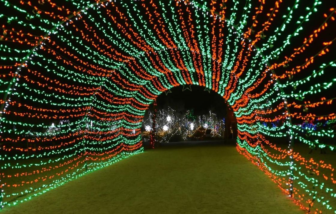 The Living Desert Zoo and Gardens WildLights Returns this Holiday Season