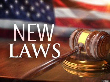 2020: New Decade, New Set of California Laws