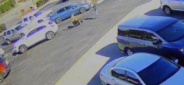 Deer tramples man in a McDonald's parking lot