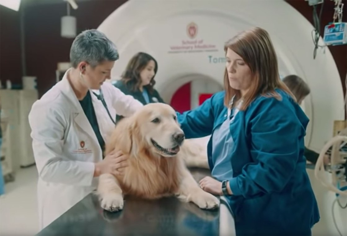 A dog owner bought a $6 million Super Bowl ad for the veterinary school that saved his beloved pet's life