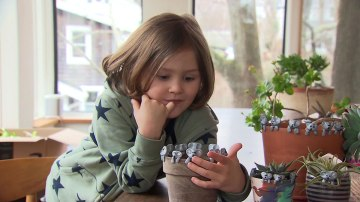 6-year-old is making clay koalas to raise money for the Australian fires. He's raised over $100,000
