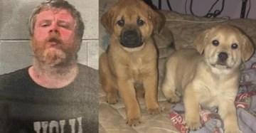 Kentucky Man Kills Neighbor's Pets for 'Doggy Coat'