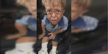 Celebrities rally to send Quaden Bayles to Disneyland after bullying video goes viral