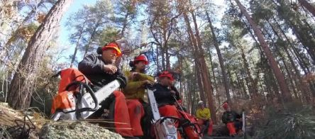 Former inmates start forestry company after learning skills in prison