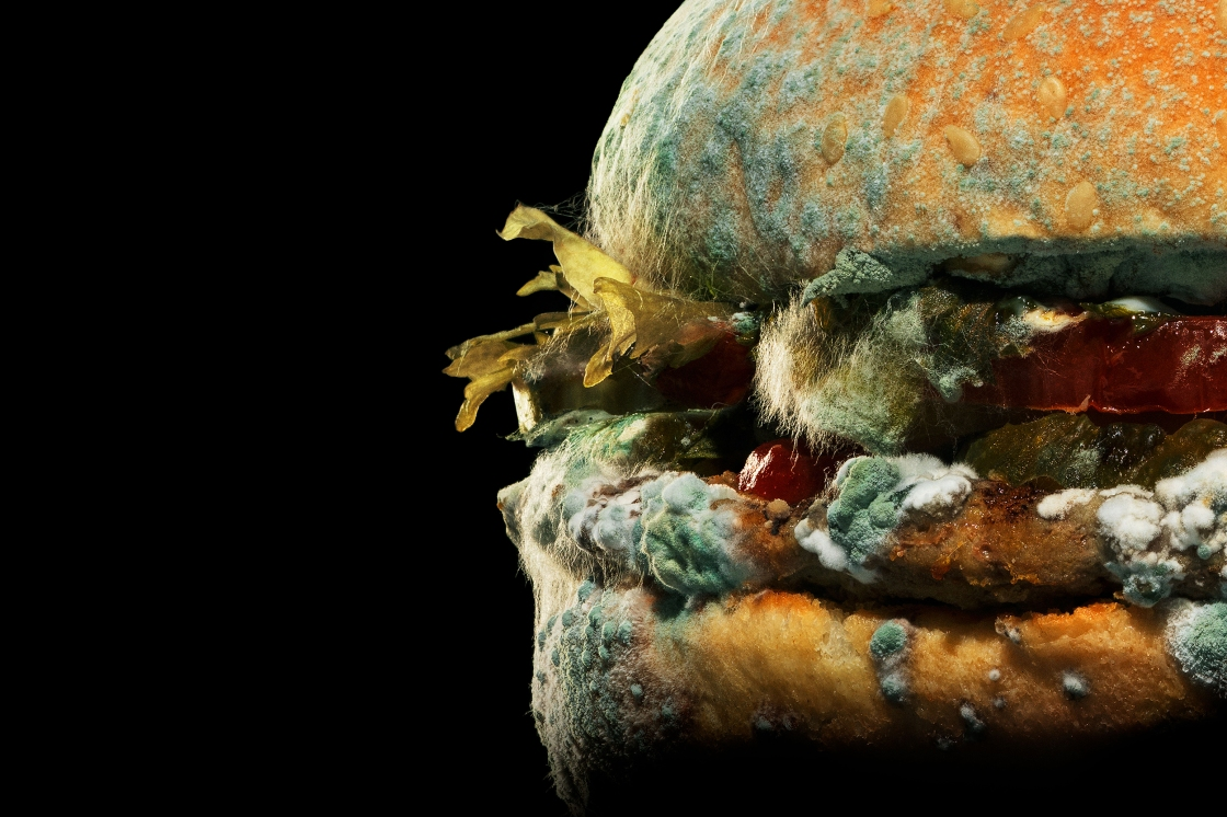 Burger King thinks moldy Whoppers will get you to buy more burgers