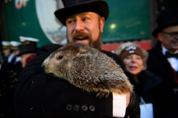 Groundhog predicts early spring. Don't get too excited, he's usually wrong